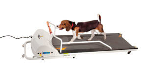 pr720f-dog-treadmill