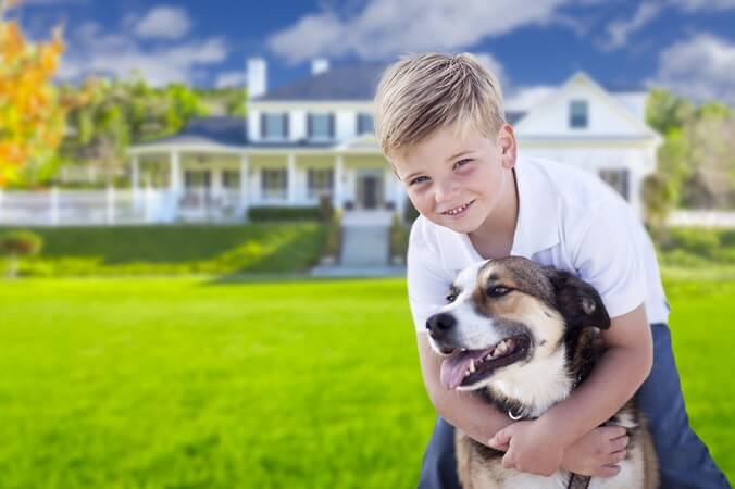 benefits of using invisible pet fence invisible dog fence reviews