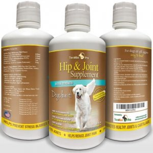 Best Hip and Joint Supplement for Dogs