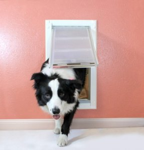 Endura Flap Pet Door