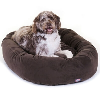 What To Look For In Dog Beds When Shopping For Your Pet
