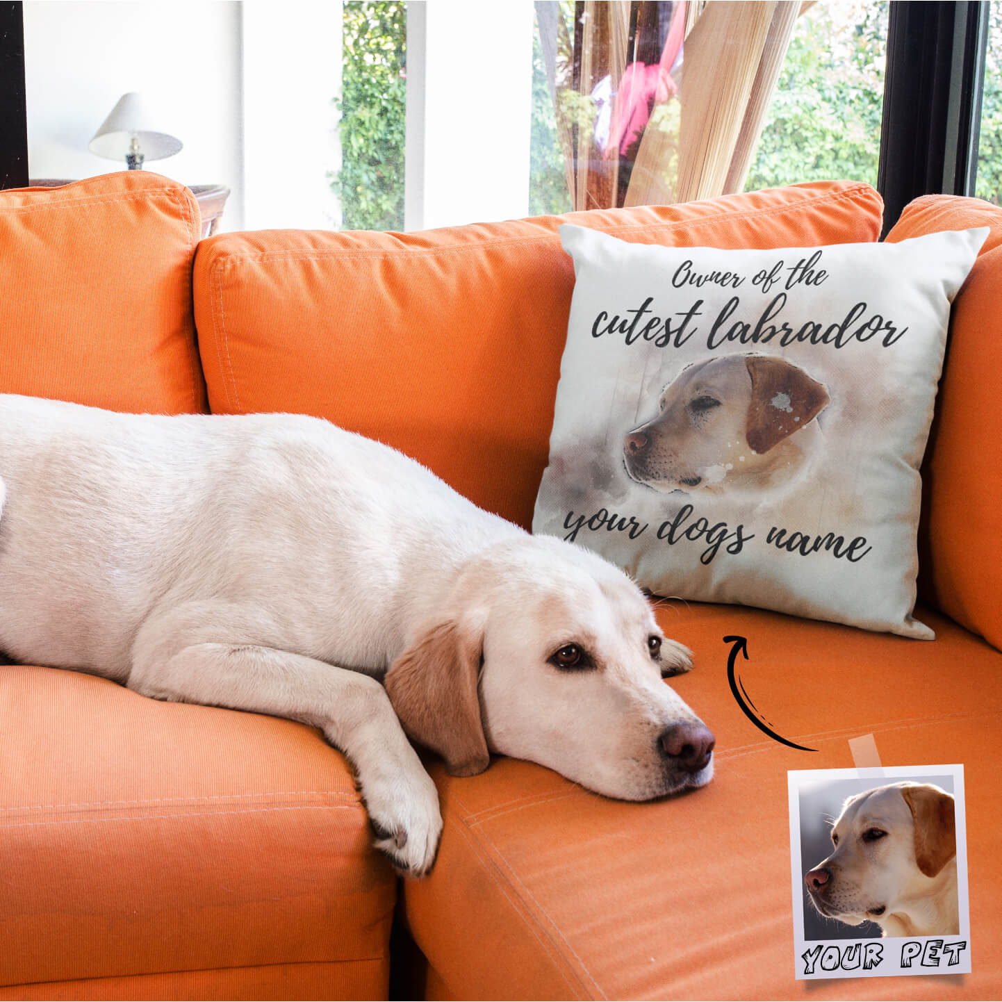 Custom Pillow On An Orange Sofa Near A Labrador Dog V3